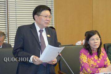 Đại biểu đề nghị Bộ Nông nghiệp trả lời việc 'lên ti vi mua thịt lợn giá rẻ'