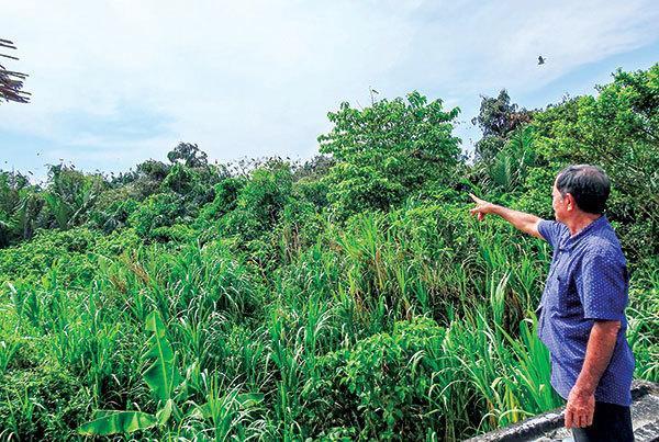 Man dedicates his life to protecting wild birds