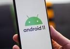 Cách tải và cài đặt Android 11 pubic beta cho điện thoại Pixel