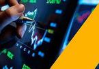 More investors join Vietnamese stock market, cash flows in