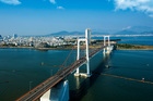 Việt Nam cần mơ giấc mơ 'kỳ tích sông Hồng'