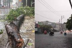 Bão số 1 gây mưa dông lớn ở Sài Gòn, nhánh cây rơi làm người bị thương