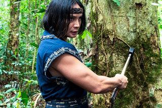 Thai, Vietnamese martial arts actors work on new film