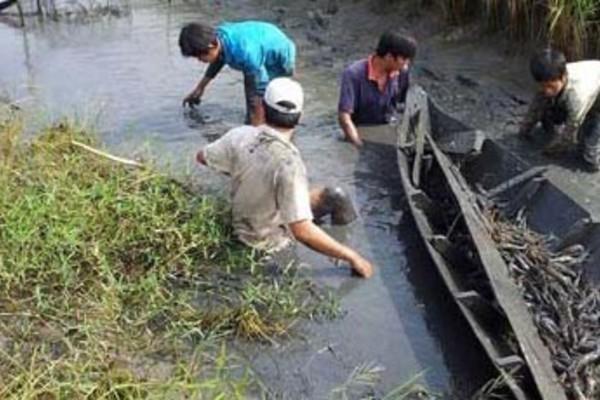 Mỗi năm Bạc Liêu đã giúp cho hàng ngàn hộ vươn lên thoát nghèo