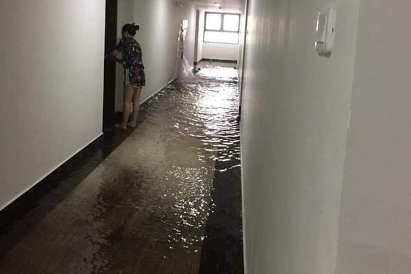 Mưa lớn, dân chung cư cũng tát nước như ở nhà phố