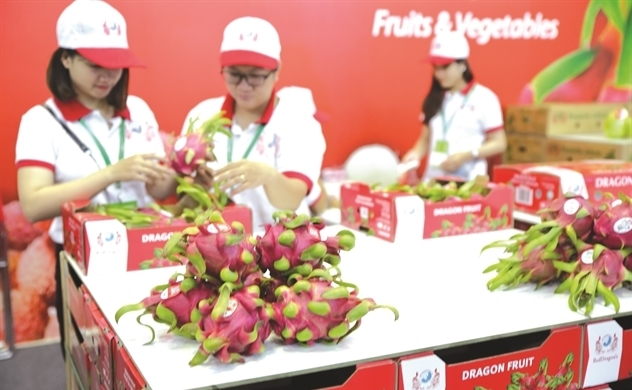 Even with EVFTA, Vietnamese fruit still relies on Chinese market