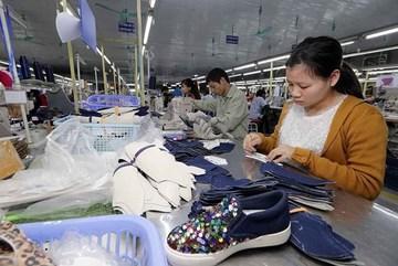 Vietnamese goods entering EU not straightforward under EVFTA