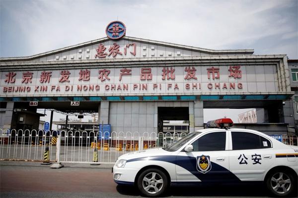 Nỗi oan cá hồi trong đợt dịch Covid-19 bùng phát ở Trung Quốc