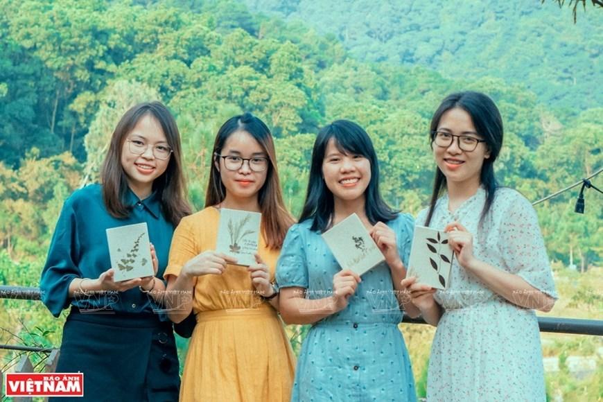 dried flowers,craft,Vietnam in photos