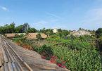 Zero-waste communities emerge in Hoi An