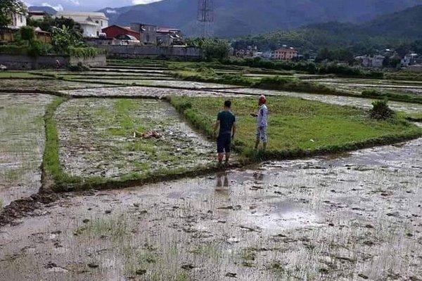 Triệu tập thêm nhiều nghi can trong vụ chém chết hai vợ chồng chủ nợ ở Điện Biên