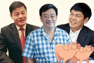 Quay về làm nông, tỷ phú USD Việt Nam mở trại nuôi lợn