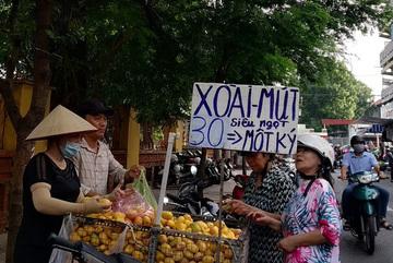 Hơn 700 tấn xoài mini Trung Quốc đổ bộ chợ Sài Gòn