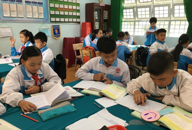 How can private tutoring in Vietnam be better managed?
