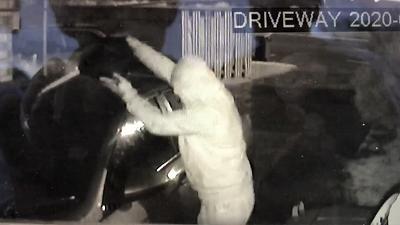 Xe ô tô bị kẻ phá hoại tẩm xăng thiêu trụi