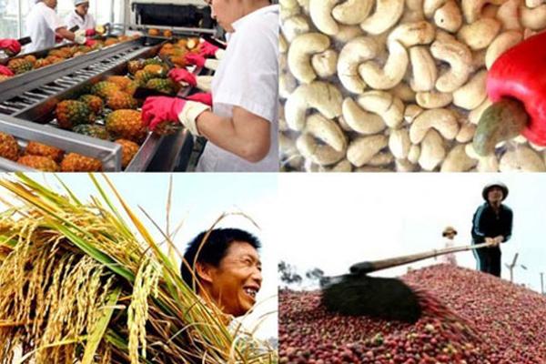 Cơ hội mở gian hàng miễn phí ở khu Nông sản Đặc sản Việt