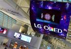 Trung Quốc tham vọng vượt Hàn Quốc trên thị trường OLED trong 5 năm tới