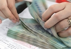 Vietnam's public debt payment at safe levels after pandemic