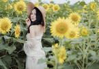 Hoa khôi Trà My tươi trẻ bên cánh đồng hoa hướng dương