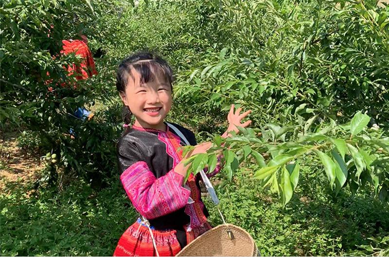 Cô bé lớp 1 giới thiệu cuộc sống của đồng bào H'Mông bằng tiếng Anh gây sốt
