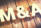 M&A deals increase during time of crisis