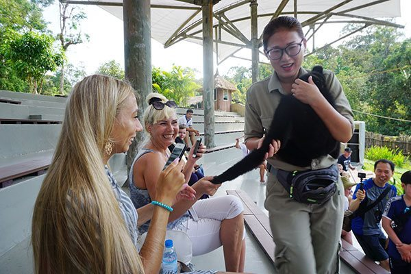 Vietnam's tourism sees great opportunities when int'l market reopens