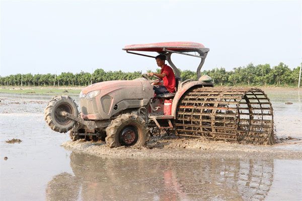 Rice farms in Dong Thap fully mechanised