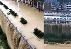 Hàng trăm triệu sinh mạng sống gần đập Tam Hiệp bị đe doạ