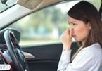 Đoán bệnh xe qua những mùi đặc trưng