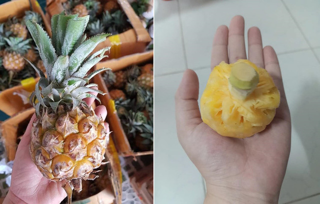 Thực hư dứa Thái mini siêu ngọt giảm giá 'sập sàn' 10.000 đồng/kg