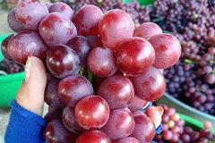 Tiểu thương hơn 20 năm bán hoa quả tiết lộ nguồn gốc nho không hạt bán tràn lan