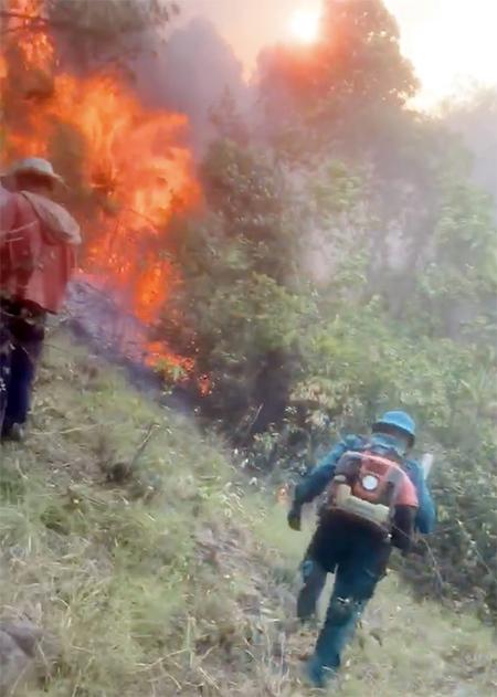 Lửa bùng phát trở lại, rừng ở Nghệ An tiếp tục cháy lớn