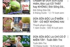 Dừa sữa bán đầy vỉa hè, người bán cây giống tại Bến Tre tiết lộ sự thật