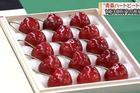 Cherry Nhật kỷ lục 64 triệu 15 quả, về Việt Nam giá 6,6 triệu/kg