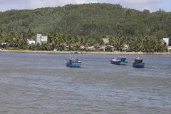 2 chủ tàu cá ở Bình Định bị phạt 1,8 tỷ đồng