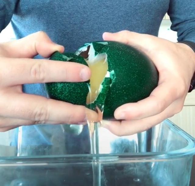 Trứng đà điểu xanh giá tiền triệu, nhà giàu ăn sang cũng phải nhịn miệng