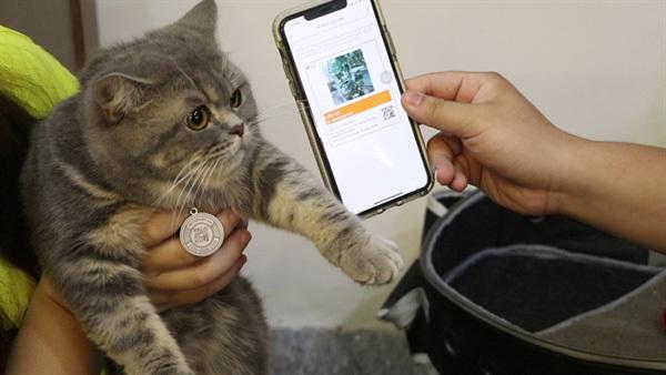So your pet may roam free