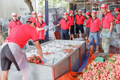 Exporters become creative to boost farm specialty exports