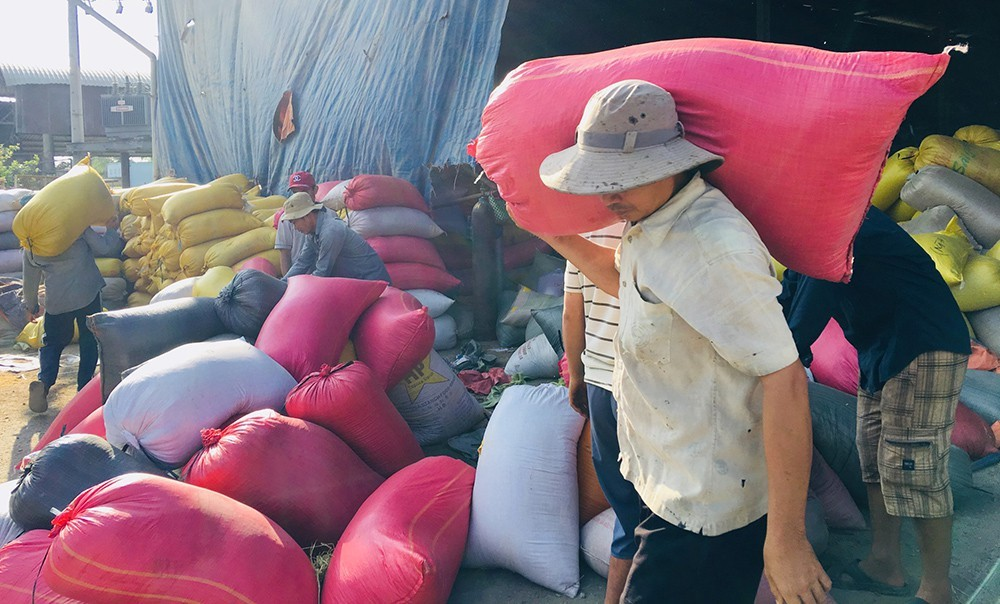 Rice importers try to force prices down, Vietnam needs long-term export plan