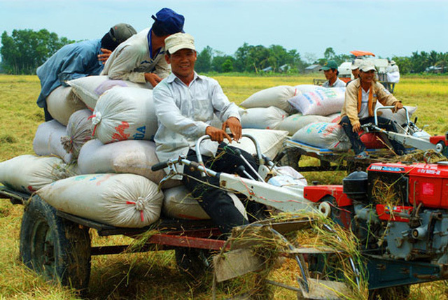 To mechanize Vietnam's agriculture, tractor drivers also need to be trained