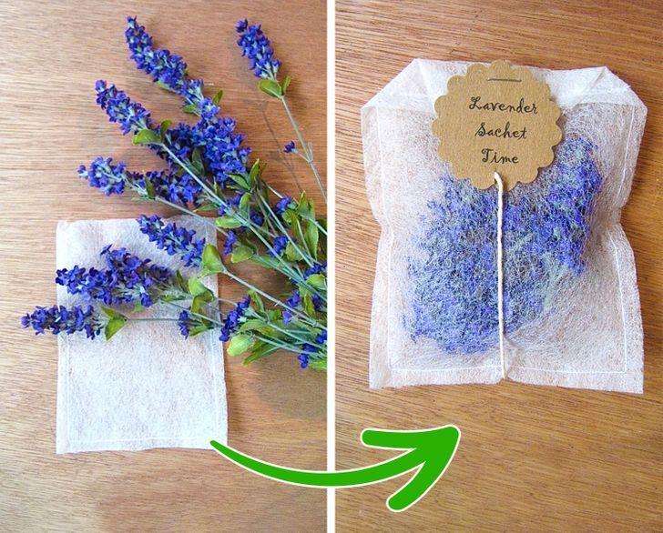 15 cách khử mùi hôi cho căn nhà của bạn