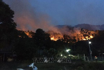 Forest fires a burning problem during dry season in Vietnam