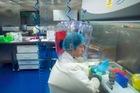 Bên trong phòng thí nghiệm bị nghi tạo ra virus corona
