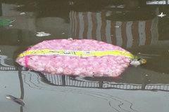 Tấn tỏi gắn mác Trung Quốc trôi trên sông, khuyến cáo không được ăn