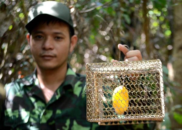 Six-man squad protects animals inSon Tra Peninsula