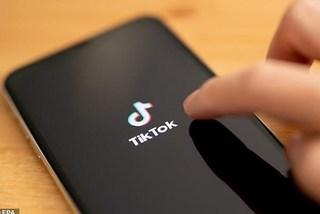 """Người dùng lo TikTok sụp đổ do lượt """"thích"""" video bất ngờ biến mất"""