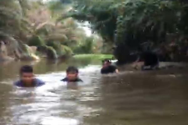 Cảnh sát dầm mình dưới bùn, bơi lặn bắt sới bạc giữa đầm lầy