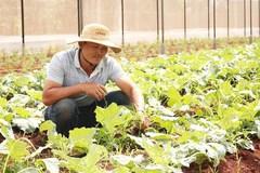 Gia Lai tiếp tục đề ra nhiều giải pháp để giảm nghèo bền vững