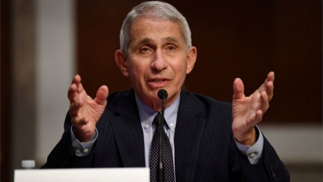 Coronavirus: White House targets US disease chief Dr Anthony Fauci