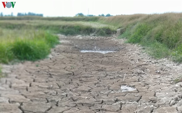 Nghe An Province suffers severe drought